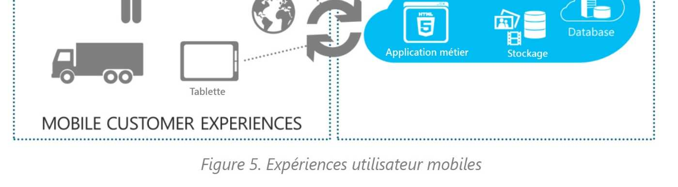 Solution En Janvier 2010, Connect2Field a migré son application sur Windows Azure.
