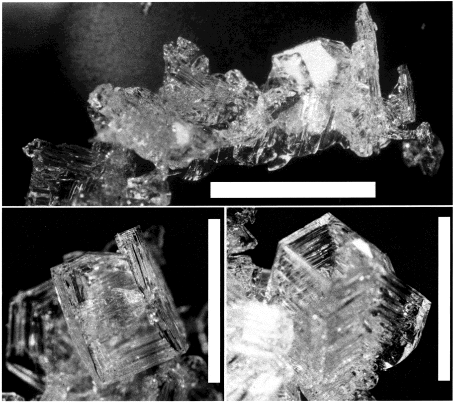 FIGURE 7. Optical microscopy pictures of crystals from sample 4. Top: Cluster of faceted crystals.