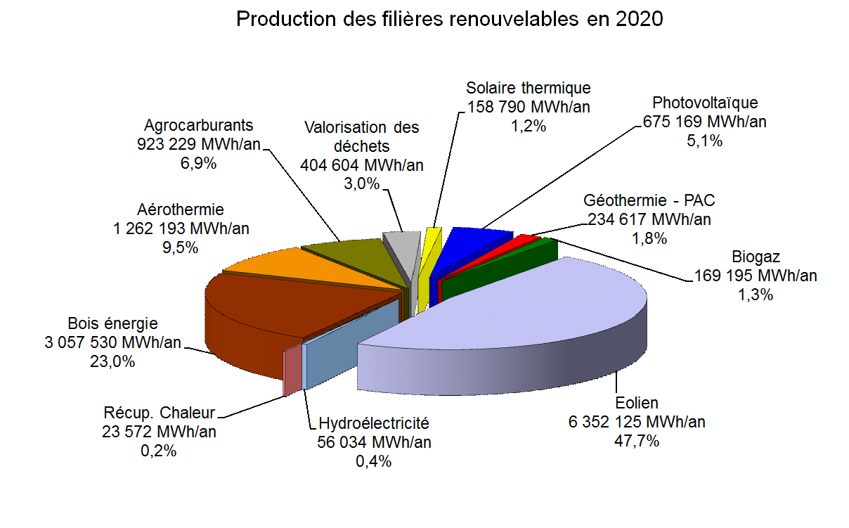 19.2. REPARTITION DE LA PRODUCTION TOTALE DES ENRS EN 2020 (AVEC