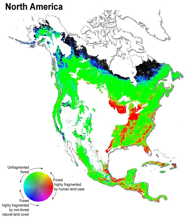 page 50/90 Annex 23: Figure 3.15. Estimates of Forest Fragmentation due to Anthropogenic Causes (C4 [see Annex 4, p.