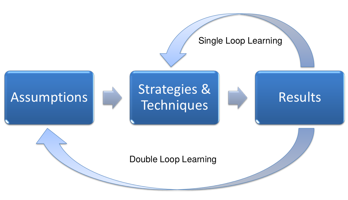 Double loop learning 23 23.