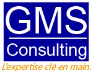 * Intégration de Solutions * Gestion de Contrats Outsourcing *