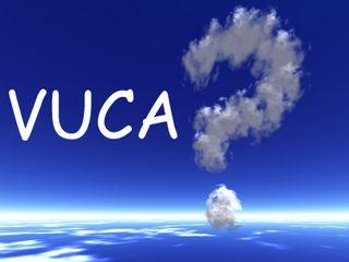 VUCA Strong interdependence creates a VUCA world In a