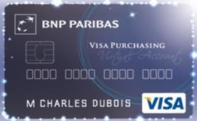 Ets Publics Cartes Corporate, Affaires Cartes Logées Cartes Achat.