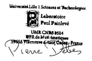 Laboratoire Paul Painlevé (http://math.univ-lille1.fr/bourses/index.html) and of the Labex CEMPI (http://math.univ-lille1.fr/~cempi).
