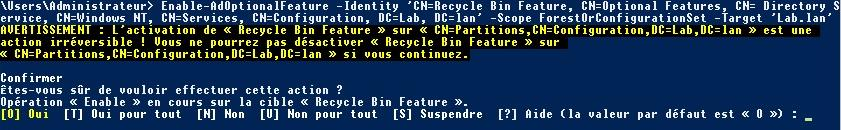 lan : Enable-AdOptionalFeature Identity CN=Recycle Bin Feature, CN=Optional Features, CN= Directory Service, CN=Windows NT, CN=Services, CN=Configuration, DC=Lab, DC=lan Scope