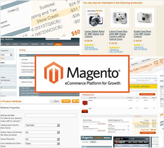 > ZOOM MAGENTO LA SOLUTION OPEN SOURCE DE