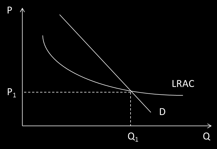 Figure 1.1: Market equilibrium in the case of natural monopoly However, such stable equilibrium may be rarely found in practice.