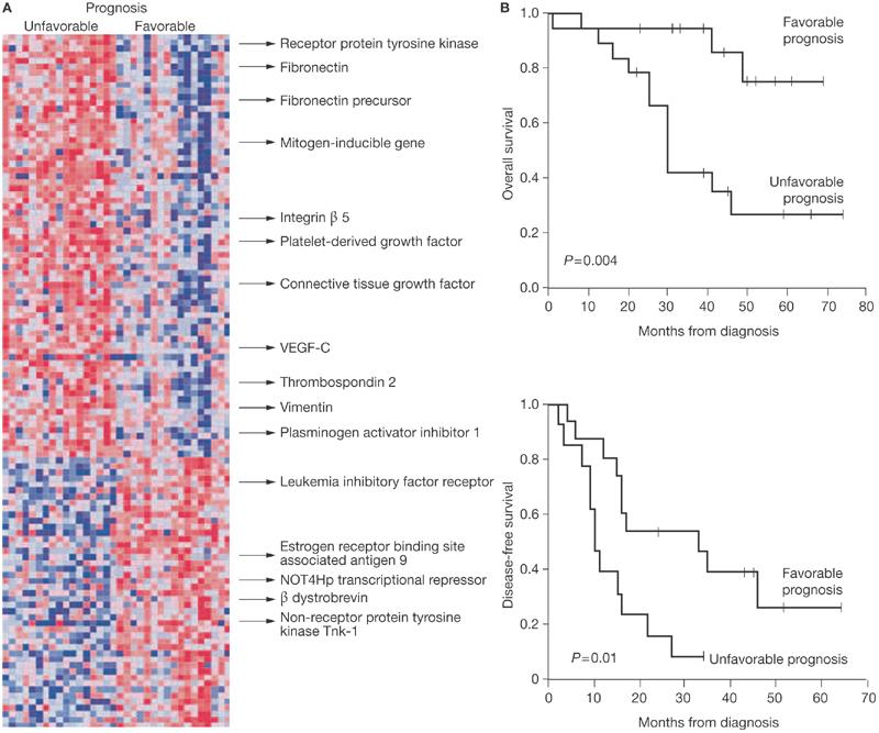 Molecular signatures for cancer patient stratification (Gene-expression profiling in