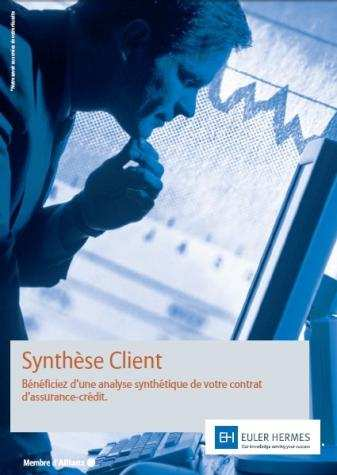 Synthèse Client Une analyse