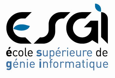 MASTER OF SCIENCE MANAGEMENT ET CONSEIL EN SYSTEMES D INFORMATION Objectifs Le Master of Science de l ESGI a pour objectif de former des ingénieurs informaticiens ayant l ensemble des compétences