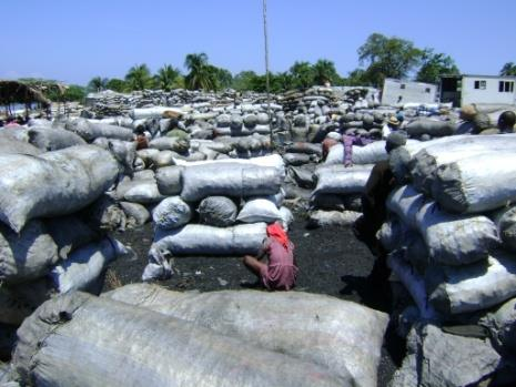 The lack of enforcement capacity in most if not all jurisdictions is also a primary concern for engaging in protective measures. Charcoal market in Arcahaïe III.