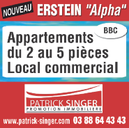 VENDS GRAND BÂTIMENT COMMERCIAL 3x1080 m² y compris grand appartement + gge, immense parking. Situation royale.