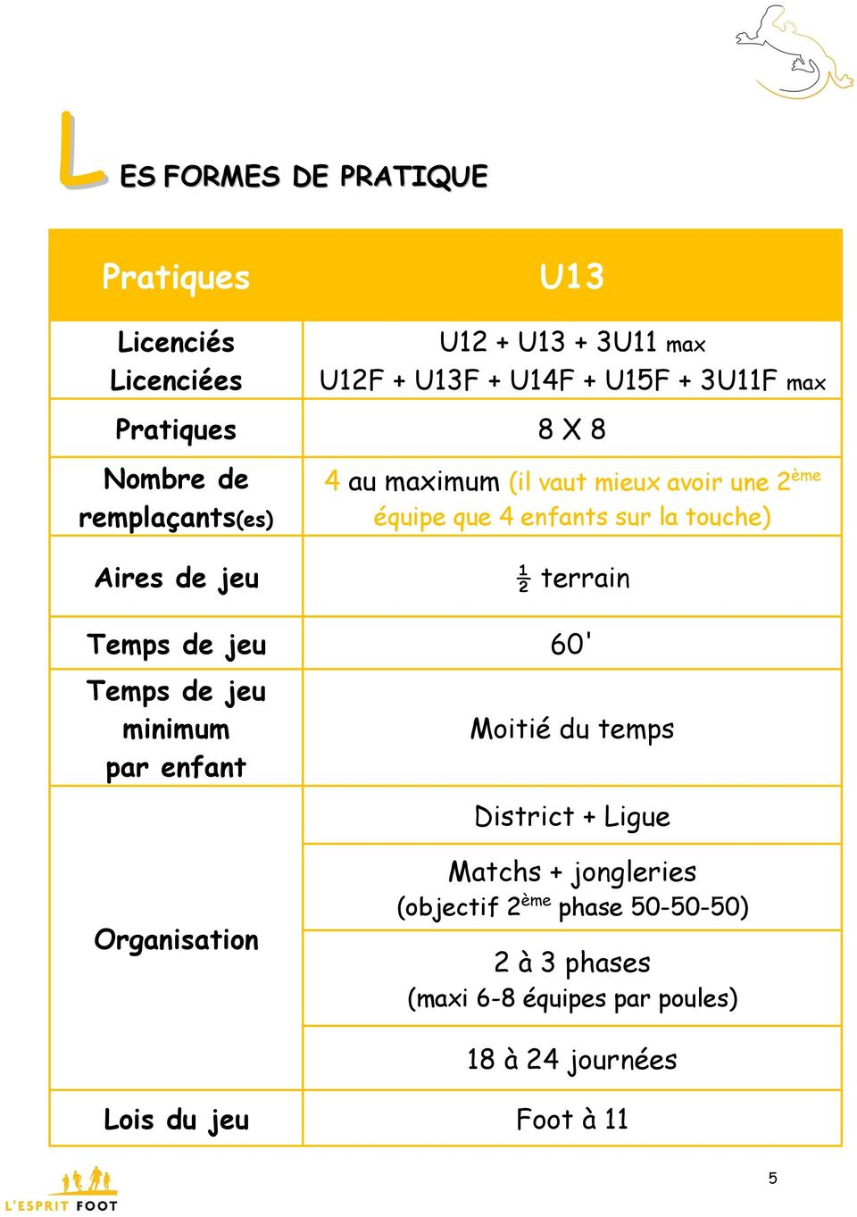 Aires de jeu ½ terrain Temps de jeu 60' Temps de jeu minimum par enfant Moitié du temps District + Ligue Organisation