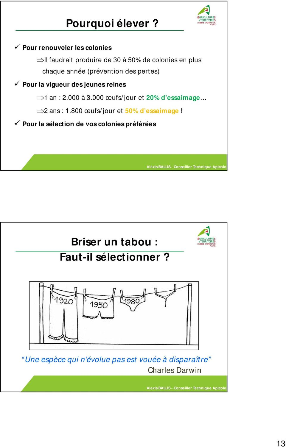 Multiplication des colonies alexis ballis conseiller for Chambre agriculture 13