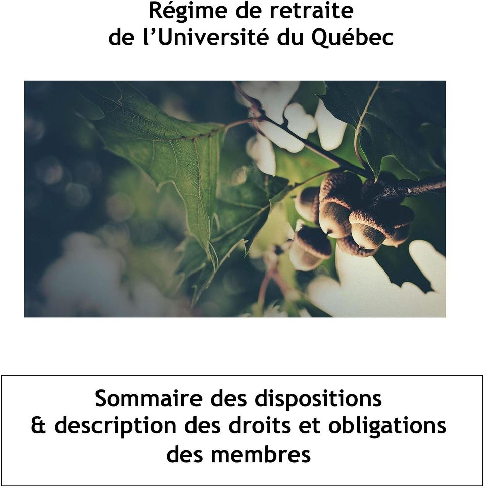 des dispositions & description