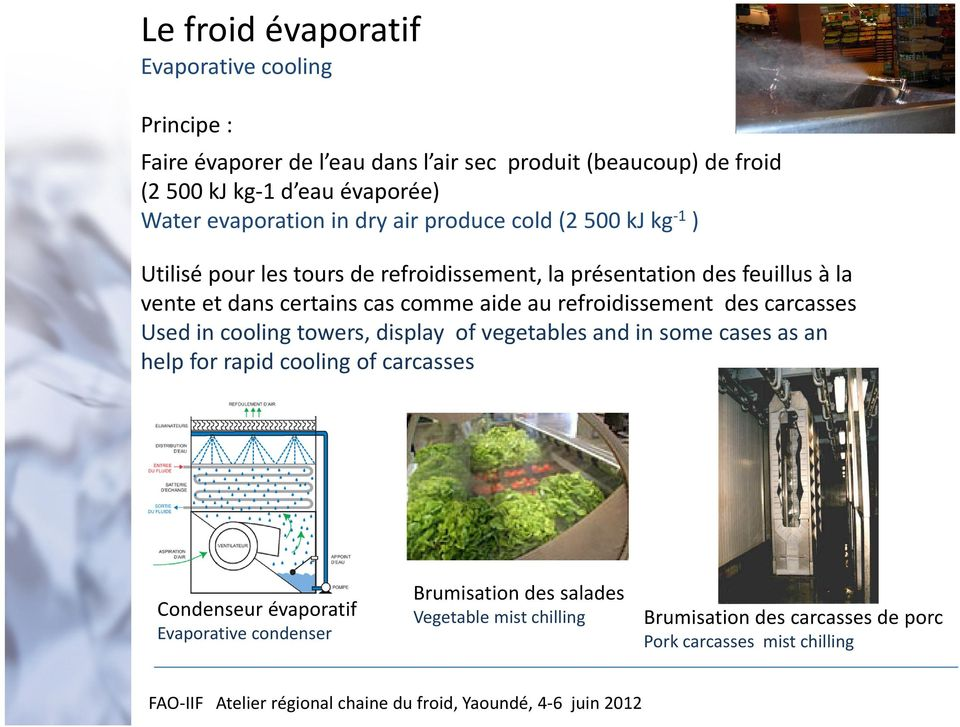 cas comme aide au refroidissement des carcasses Used in cooling towers, display of vegetables and in some cases as an help for rapid cooling of carcasses