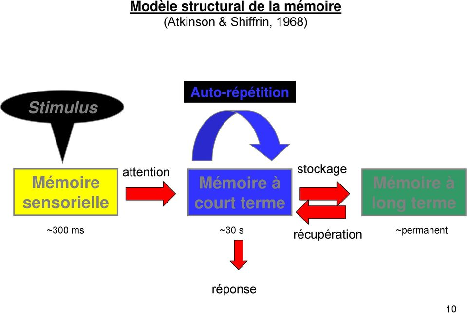 attention Mémoire à court terme stockage Mémoire à