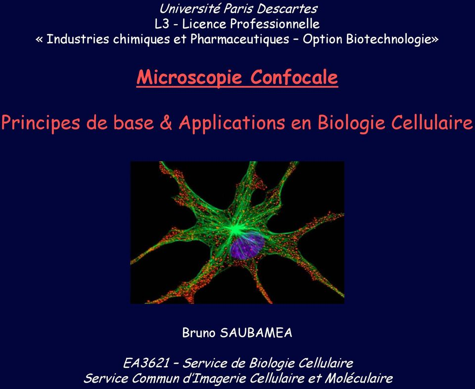 Principes de base & Applications en Biologie Cellulaire Bruno SAUBAMEA