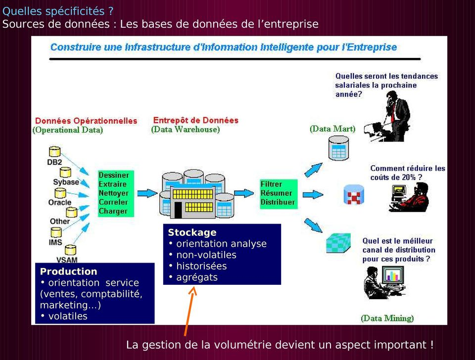 orientation service (ventes, comptabilité, marketing ) volatiles