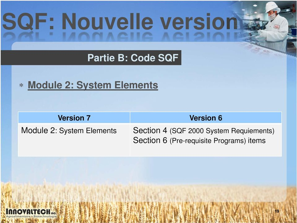 System Elements Section 4 (SQF 2000 System