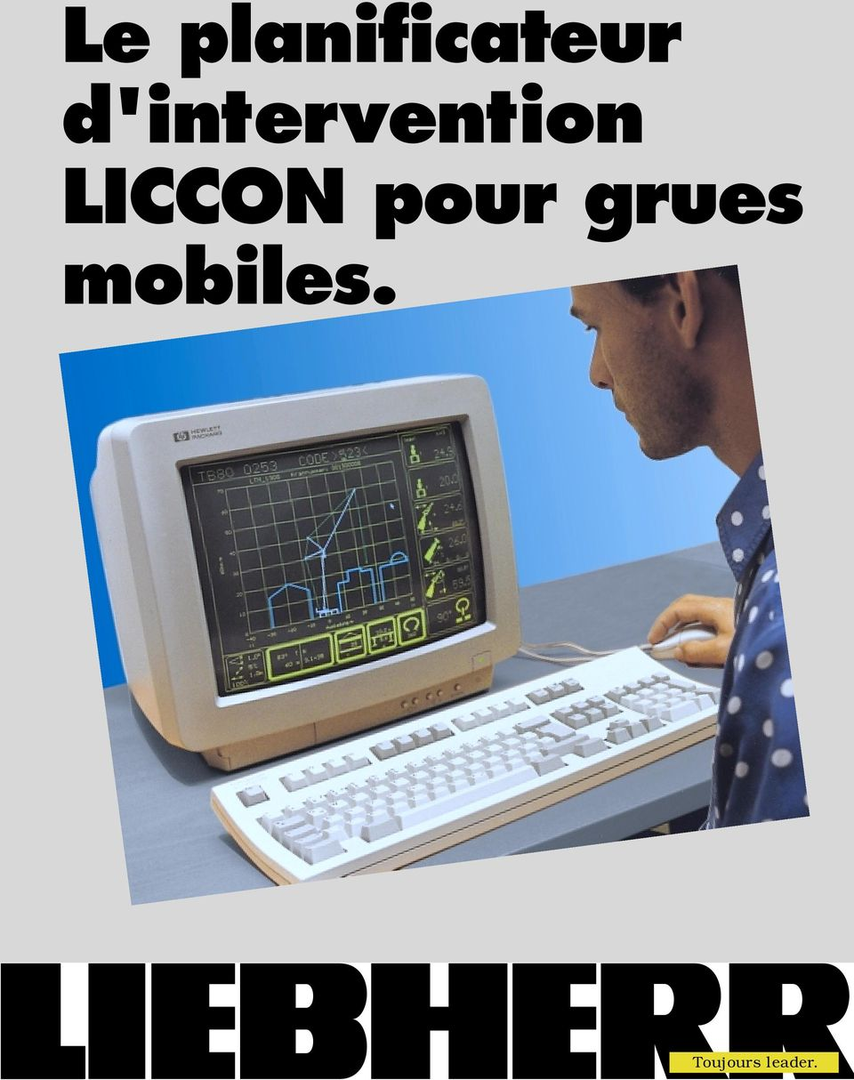 LICCON pour grues
