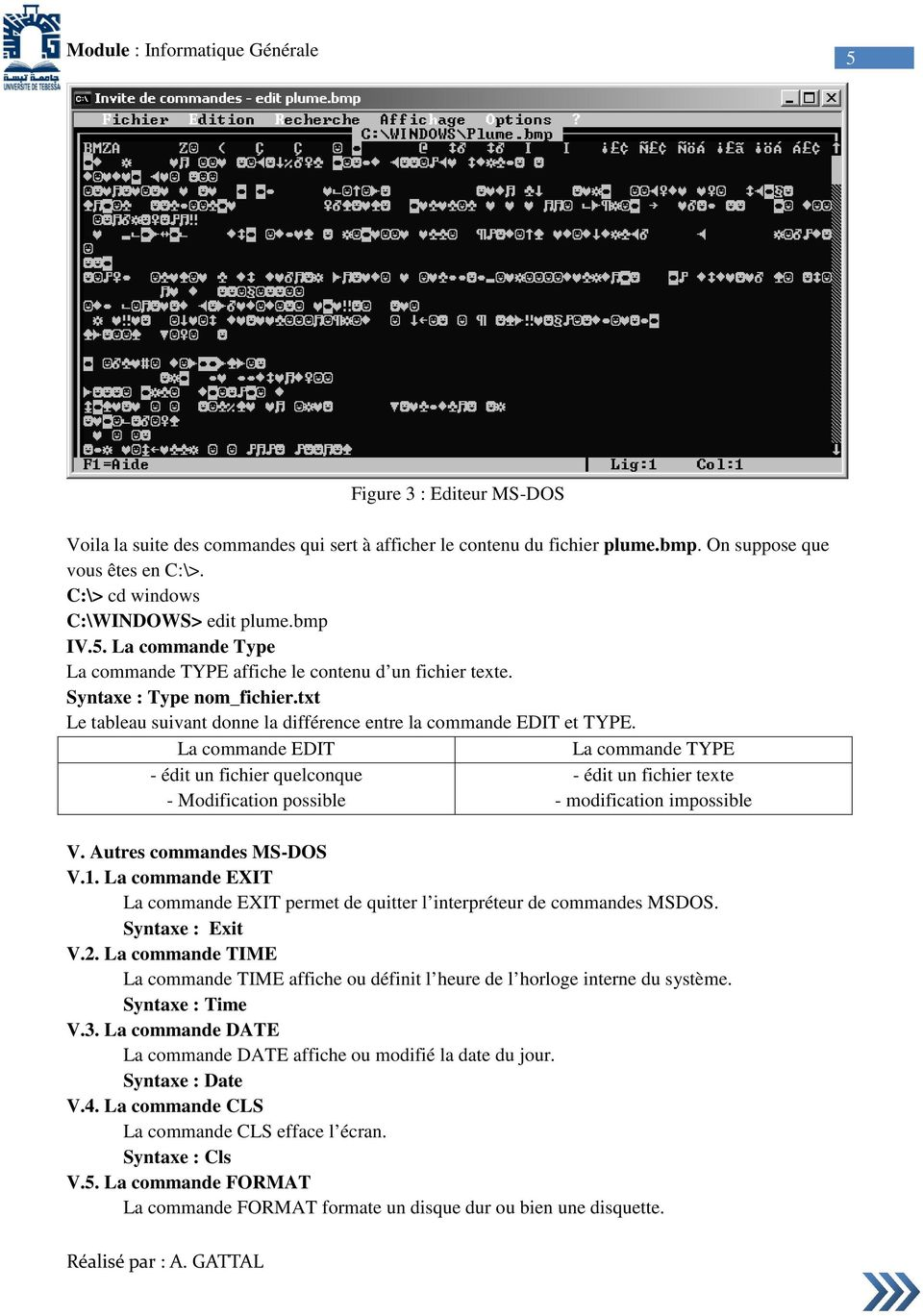 La commande EDIT La commande TYPE - édit un fichier quelconque - édit un fichier texte - Modification possible - modification impossible V. Autres commandes MS-DOS V.1.