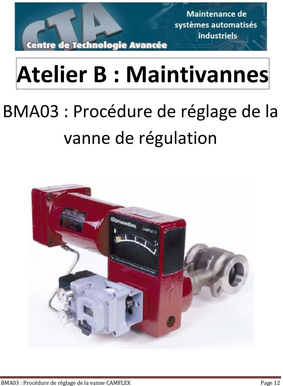 de régulation BMA03 :  CAMFLEX