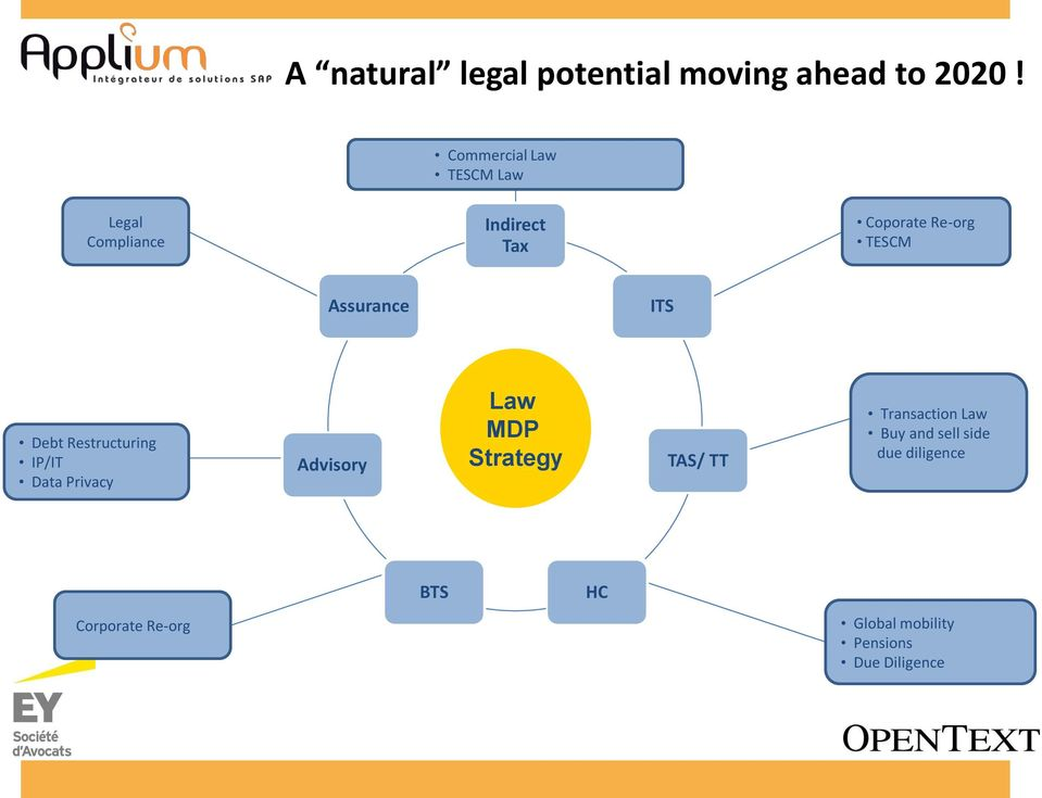 Assurance ITS Debt Restructuring IP/IT Data Privacy Advisory Law MDP Strategy