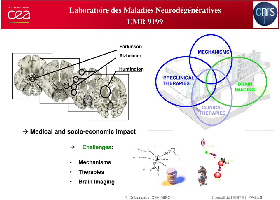 Medical and socio-economic impact Challenges: Mechanisms Therapies Brain Imaging