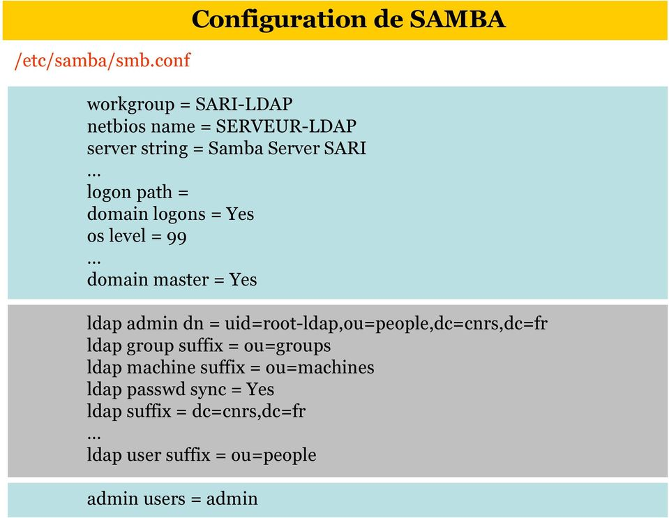 Server SARI logon path = domain logons = Yes os level = 99 domain master = Yes ldap admin dn =