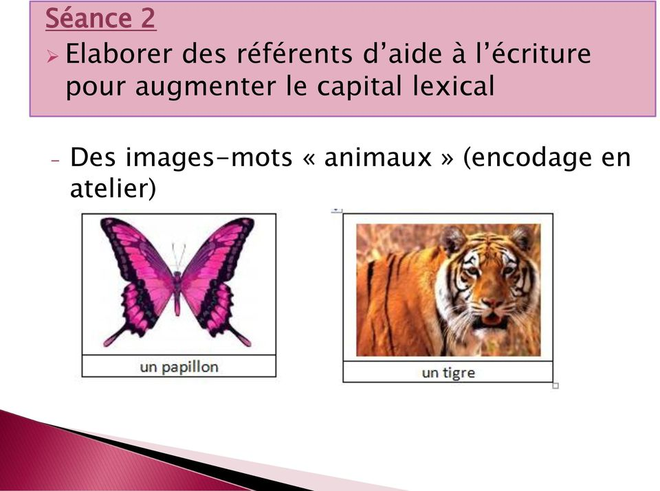 le capital lexical - Des