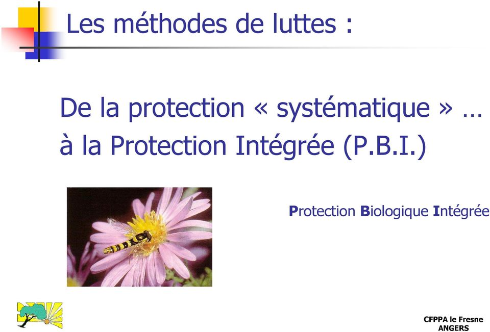 Protection In