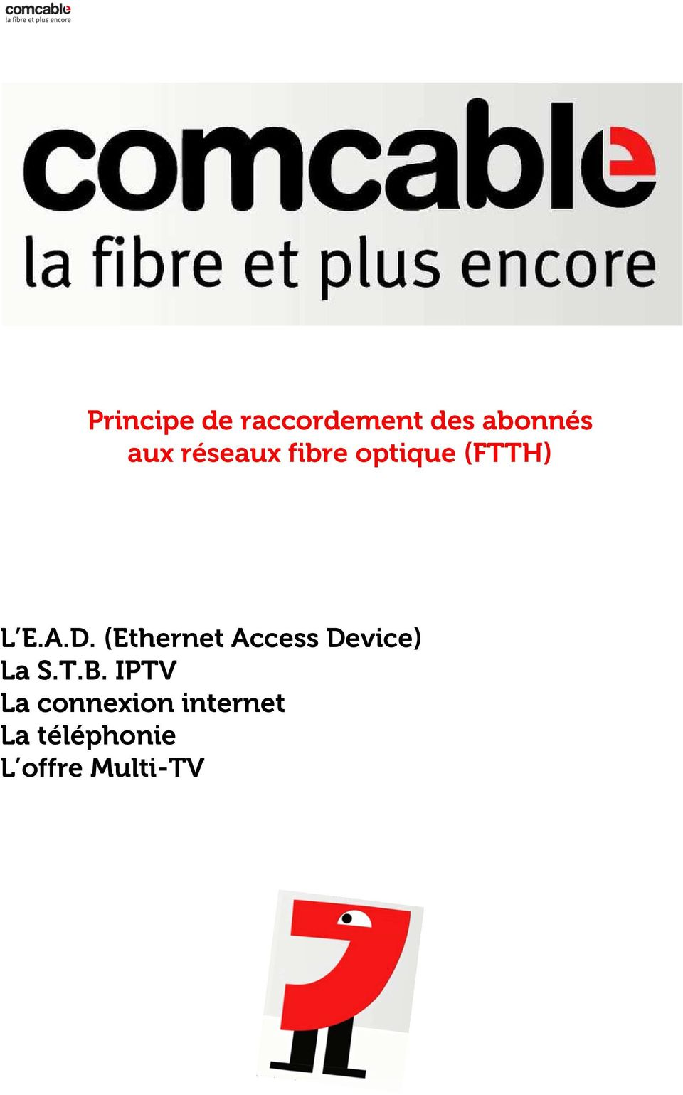(Ethernet Access Device) La S.T.B.