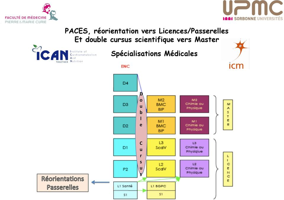 cursus scientifique vers Master