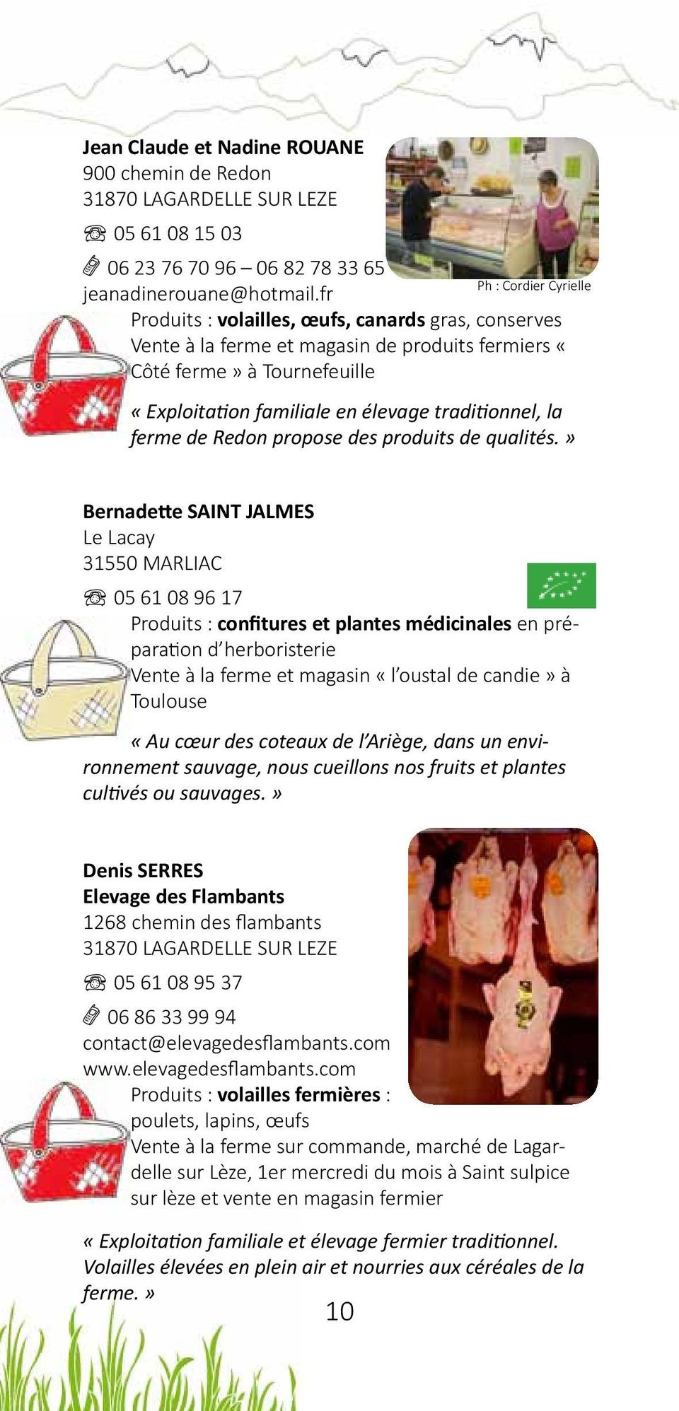 cépage gourmand tournefeuille