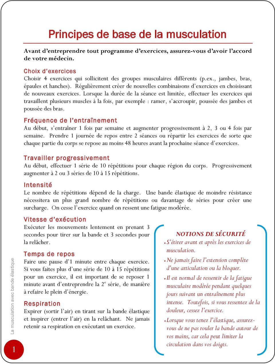 programme musculation semaine