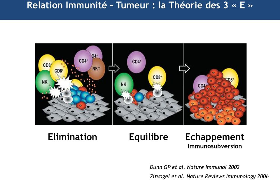 Immunosubversion Dunn GP et al.
