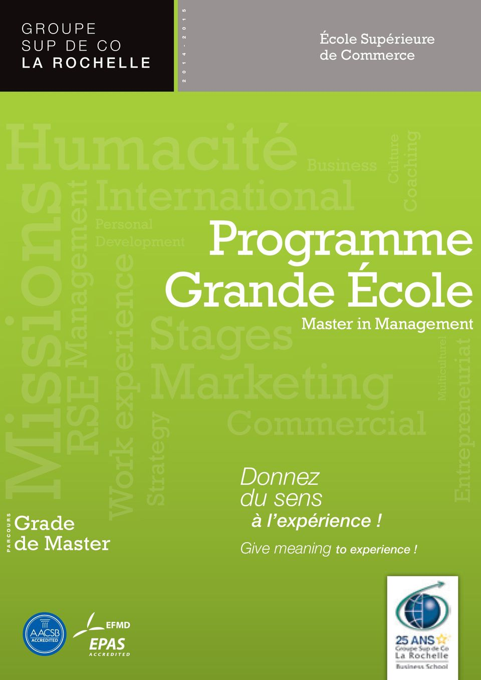 Strategy Business Culture Coaching Programme Grande École Stages Master in Management