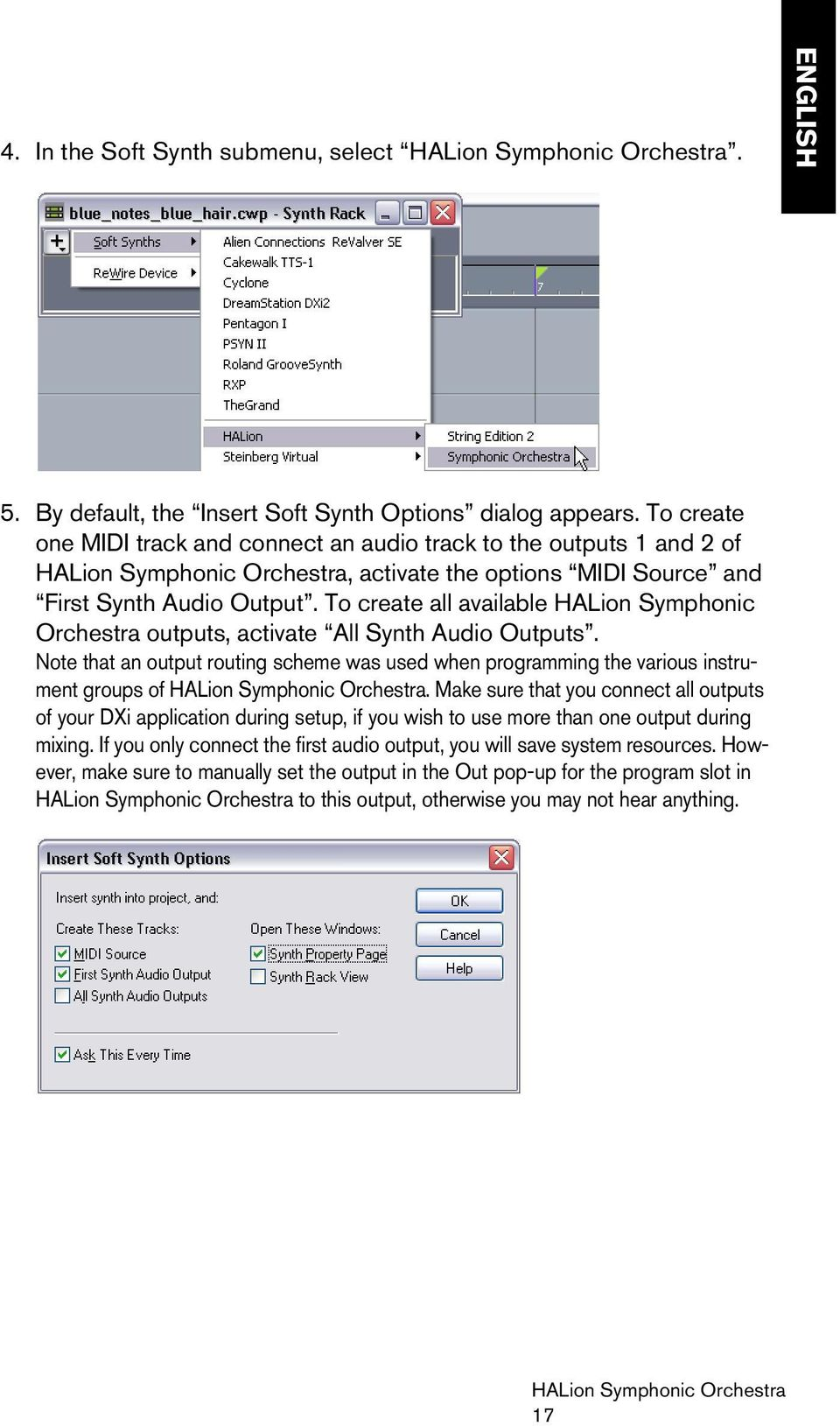 To create all available HALion Symphonic Orchestra outputs, activate All Synth Audio Outputs. Note that an output routing scheme was used when programming the various instrument groups of.