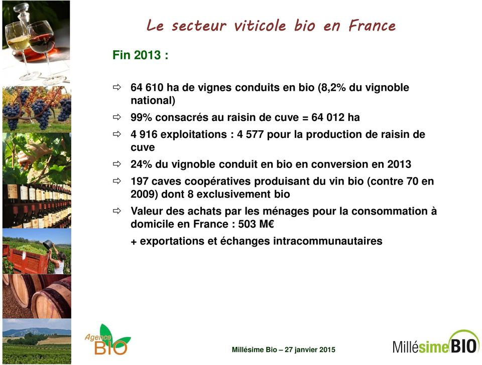 bio en conversion en 2013 197 caves coopératives produisant du vin bio (contre 70 en 2009) dont 8 exclusivement bio Valeur