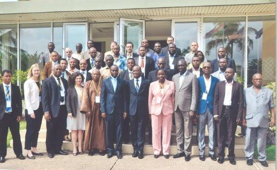 The Africa Electrification (AEI) Workshop on Low cost on-grid electrification