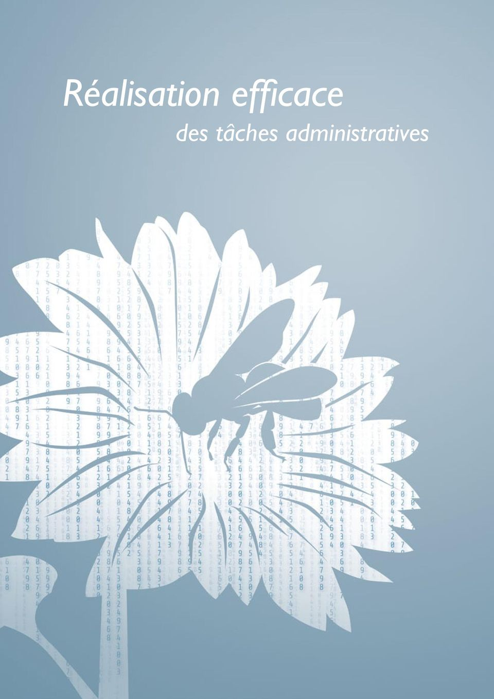 administratives 8
