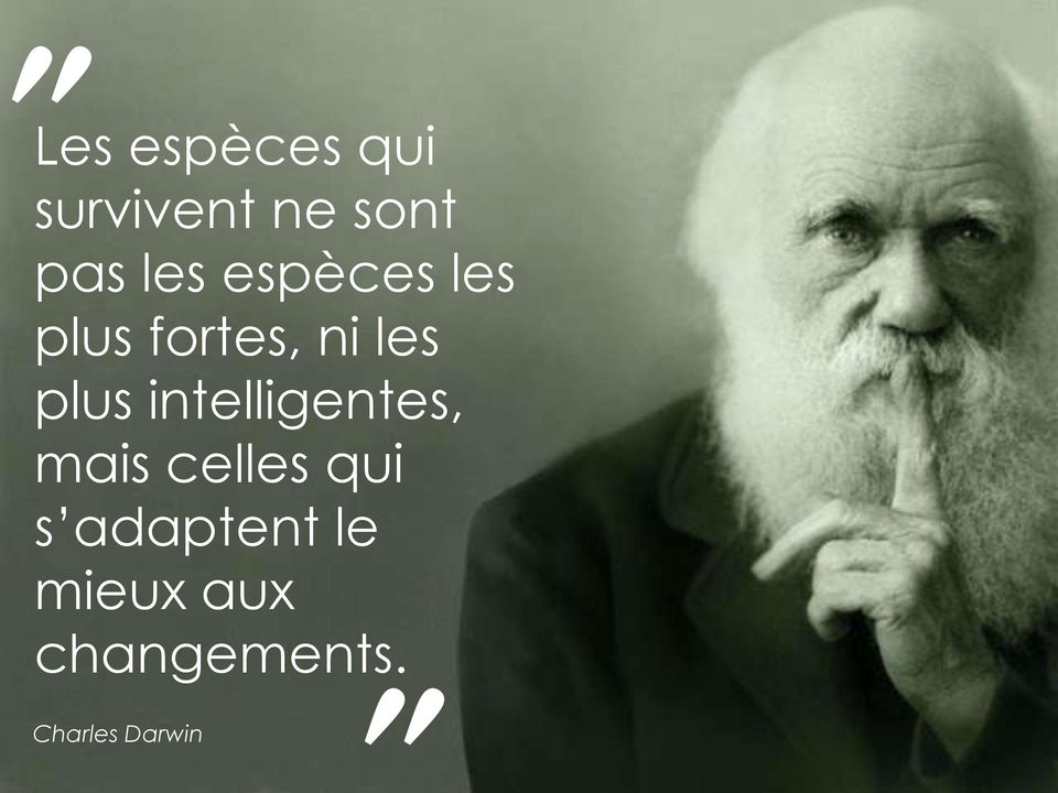 intelligentes, mais celles qui s