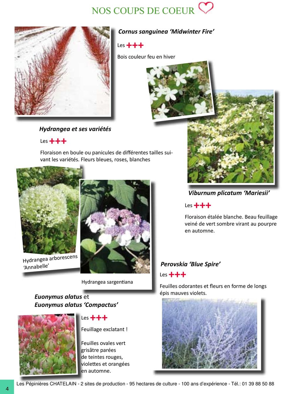 Catalogue jardinerie des pepinieres chatelain depuis 1967 for Catalogue de jardinerie