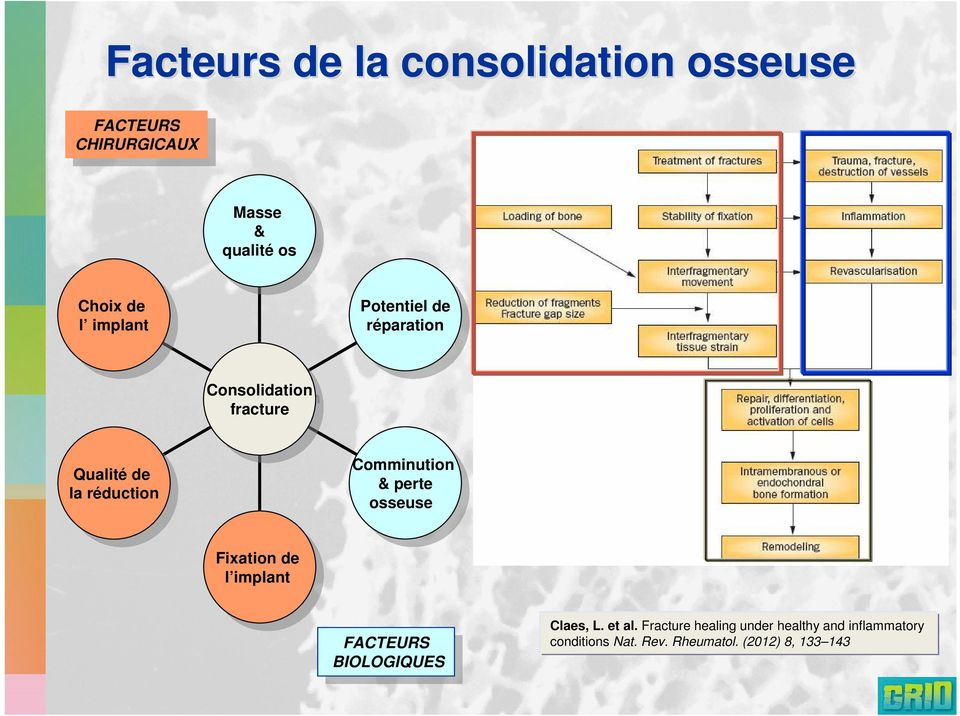 la réduction réduction Comminution Comminution & & perte perte osseuse osseuse Fixation Fixation de de l implant l implant FACTEURS