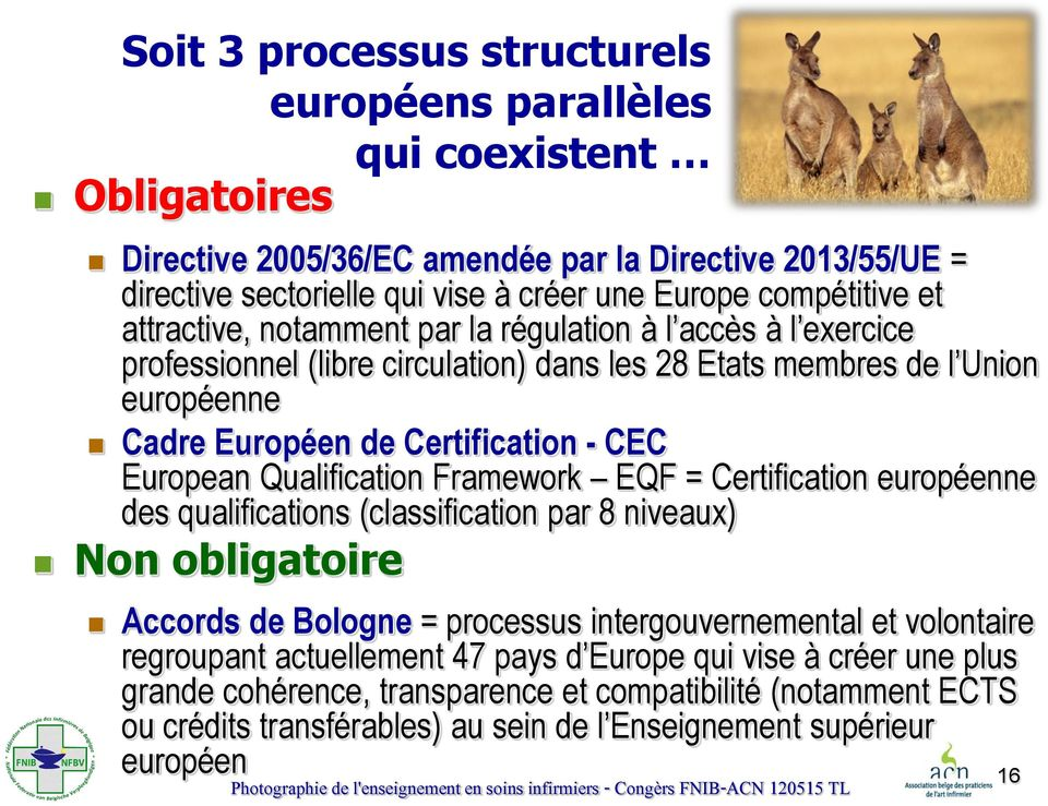CEC European Qualification Framework EQF = Certification européenne des qualifications (classification par 8 niveaux) Non obligatoire Accords de Bologne = processus intergouvernemental et