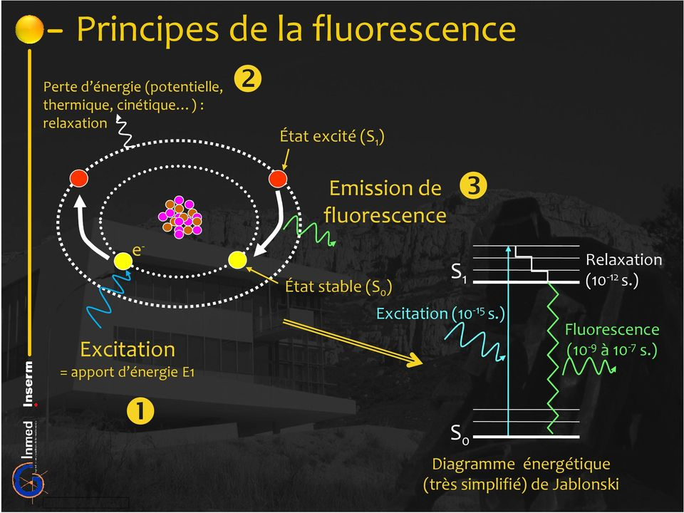 fluorescence État stable (S 0 ) ❸ S 1 Excitation (10-15 s.) S 0 Relaxation (10-12 s.