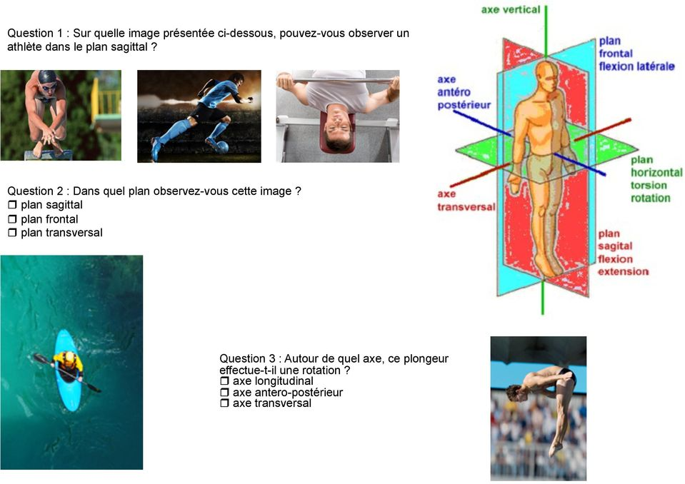 plan sagittal plan frontal plan transversal Question 3 : Autour de quel axe, ce