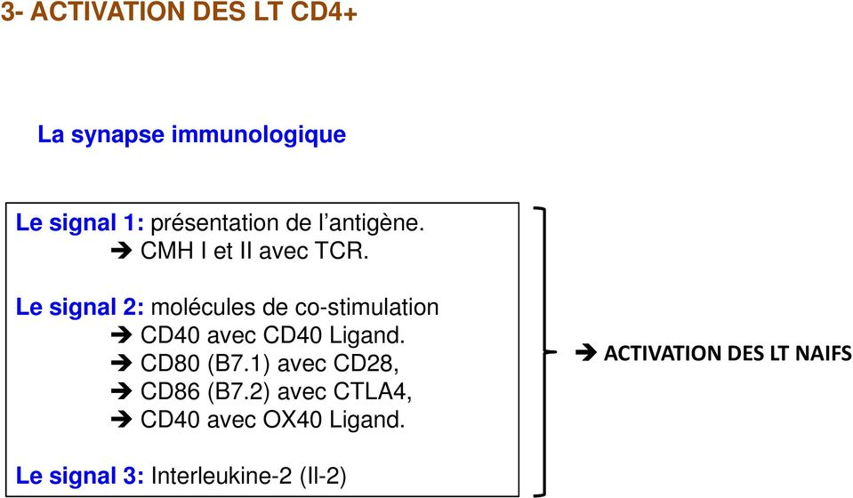 Le signal 2: molécules de co-stimulation CD40 avec CD40 Ligand. CD80 (B7.